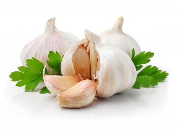 lechenie-mollyuska-narodnymi-sredstvami