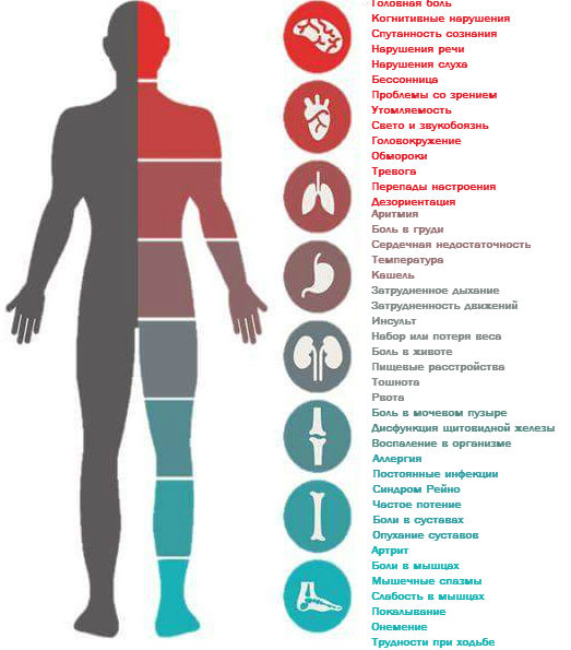 simptomy-borrelioza