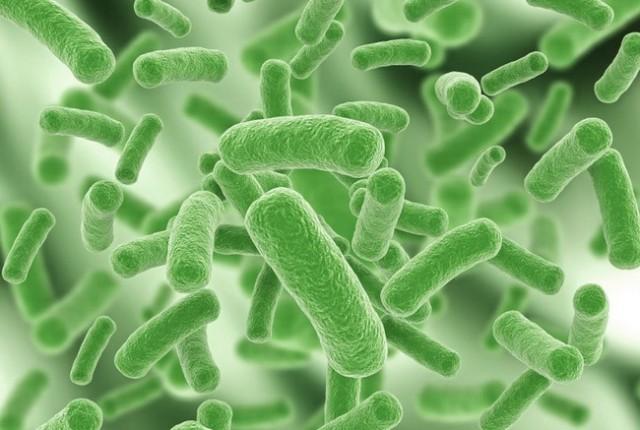 infektsii