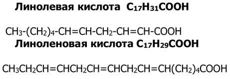 kisloty