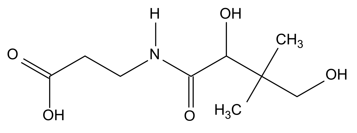 pantotenovaya